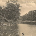 A Shady Glen, Lake Newton, Collingswood, NJ