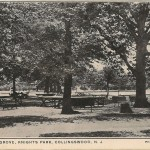 A View in the Grove, Knights Park, Collingswood, NJ