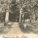 View in Knight's Park, Collingswood, NJ 1906