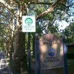 Tree City sign, Riverton Rd.