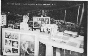 Nature Island, Camp Lenape, postmark 1954